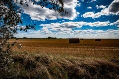 Exploração agrícola de Fenland Fotos de Stock Royalty Free