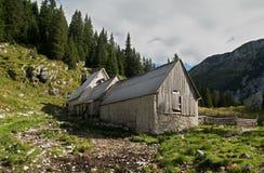 Exploração agrícola de gado em Planina Duplje perto do lago do jezero de Krnsko em Julian Alps Fotografia de Stock