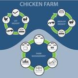 Exploração agrícola de galinha Infographic Foto de Stock
