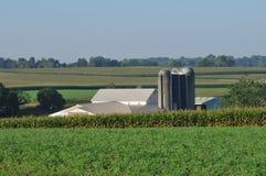 Exploração agrícola de Lancaster com campos do silo e de milho imagens de stock royalty free