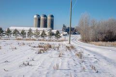 Exploração agrícola de leiteria no inverno Fotos de Stock