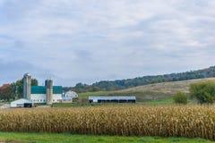 Exploração agrícola de leiteria tradicional de Wisconsin imagem de stock