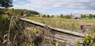 Exploração agrícola de Ontário fotos de stock royalty free