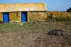 Exploração agrícola de pedra velha Foto de Stock