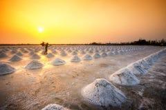 Exploração agrícola de sal Fotografia de Stock Royalty Free