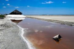 Exploração agrícola de sal Fotos de Stock