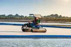 Exploração agrícola de sal com o carro do rolo de sal no campo de sal Imagem de Stock Royalty Free