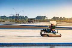Exploração agrícola de sal com o carro do rolo de sal no campo de sal Fotografia de Stock Royalty Free