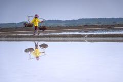 Exploração agrícola de sal do mar Foto de Stock
