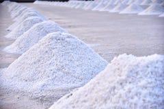 Exploração agrícola de sal do mar Fotos de Stock