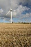 Exploração agrícola de vento, Cornualha Fotos de Stock Royalty Free