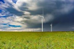 A exploração agrícola de vento em Poppy Field, Geórgia, pode 2017 imagens de stock royalty free
