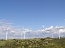Exploração agrícola de vento no campo Imagem de Stock