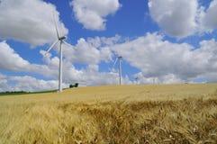 Exploração agrícola de vento no campo Fotografia de Stock