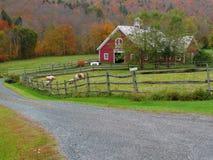 Exploração agrícola de Vermont Fotos de Stock