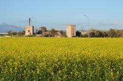 Exploração agrícola de Watermill com as flores do campo da mostarda Imagens de Stock