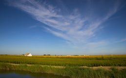 Exploração agrícola do arroz Fotografia de Stock