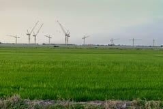 Exploração agrícola do arroz com construção Imagens de Stock Royalty Free