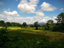 Exploração agrícola do arroz em Pua, Nan, Tailândia Imagem de Stock