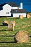 Exploração agrícola do beira-mar fotos de stock royalty free
