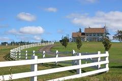 Exploração agrícola do cavalo Fotos de Stock Royalty Free