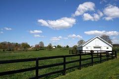 Exploração agrícola do cavalo Foto de Stock