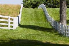 Exploração agrícola do cavalo de Kentucky imagens de stock
