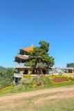Exploração agrícola do chá de Wang Put tarn Foto de Stock