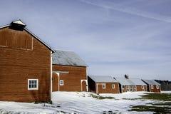 Exploração agrícola do inverno Fotografia de Stock Royalty Free