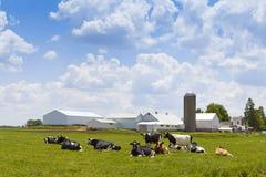 Exploração agrícola do leite imagem de stock