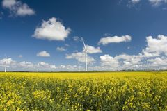 Exploração agrícola do moinho de vento Imagens de Stock
