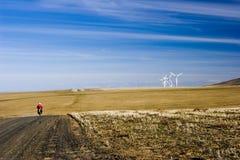 Exploração agrícola do moinho de vento Imagens de Stock Royalty Free
