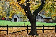 Exploração agrícola do outono Imagens de Stock Royalty Free