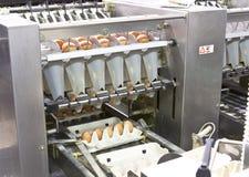Exploração agrícola do ovo Foto de Stock