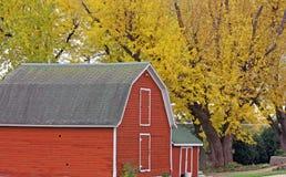Exploração agrícola do país com cores da queda Imagens de Stock Royalty Free