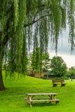Exploração agrícola do país de Amish um lugar do resto, um banco e uma tabela sob uma árvore em Lancaster, PA foto de stock royalty free