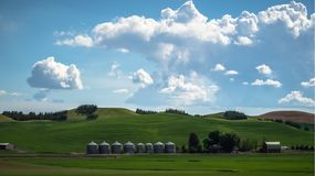 Exploração agrícola do trigo no Palouse Imagem de Stock Royalty Free