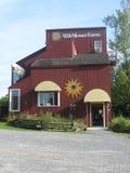 Exploração agrícola do Wildflower de Vermont Imagens de Stock