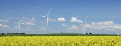 Exploração agrícola dos windturbines perto do campo da violação Fotografia de Stock