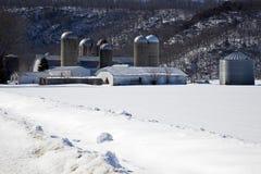 Exploração agrícola durante o inverno Fotos de Stock Royalty Free