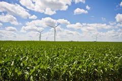 Exploração agrícola e campos de milho do moinho de vento Imagem de Stock