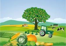 Exploração agrícola e colheita do país ilustração royalty free