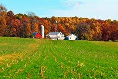 Exploração agrícola e silos de Amish imagem de stock