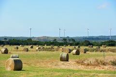 Exploração agrícola, feno, moinho de vento Imagens de Stock Royalty Free