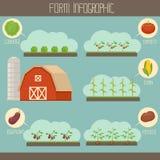Exploração agrícola infographic Imagens de Stock Royalty Free