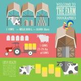 Exploração agrícola Infographics fresco Foto de Stock