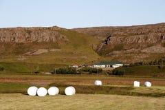 Exploração agrícola islandêsa fotografia de stock royalty free