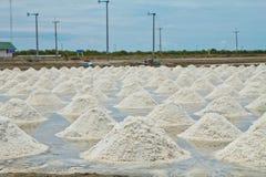 Exploração agrícola marinha de sal Fotos de Stock Royalty Free