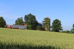 Exploração agrícola na mola Foto de Stock Royalty Free