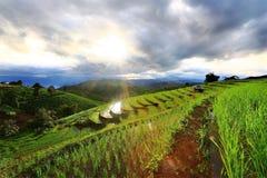 Exploração agrícola na montanha imagens de stock
